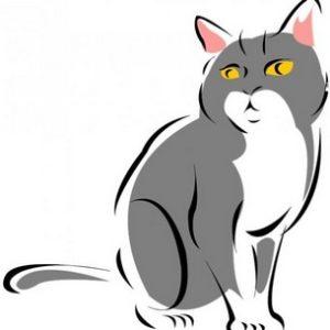 Кот в китайской астрологии