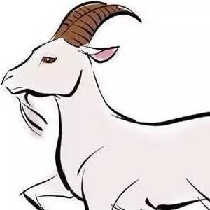 Коза в китайской астрологии