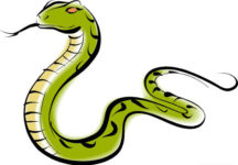 Змея в китайской астрологии