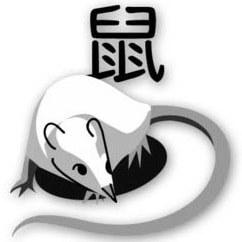 Время рождения знака Крыса из восточного гороскопа