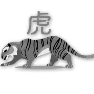 Время рождения знака Тигр из восточного гороскопа