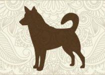 Гороскоп для людей рожденных в год Собаки