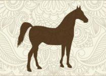 Гороскоп для людей рожденных в год Лошади