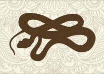 Гороскоп для людей рожденных в год Змеи
