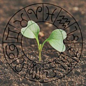 Что нужно делать знакам Зодиака, чтобы не останавливаться в росте